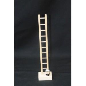 Man on ladder - loose